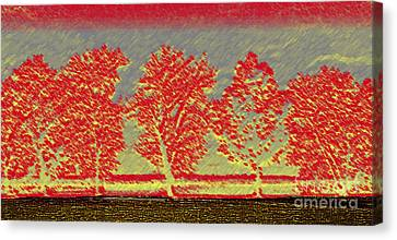 Five Trees Canvas Print by Silvie Kendall