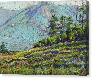 Flagstaff Meadow Canvas Print