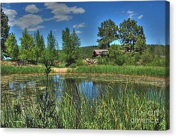 Canvas Print featuring the photograph Flagstaff by Tam Ryan