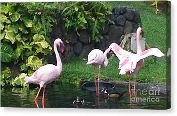 Flamingo Party Canvas Print by Silvie Kendall