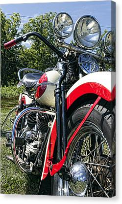 Flathead Canvas Print by Peter Chilelli