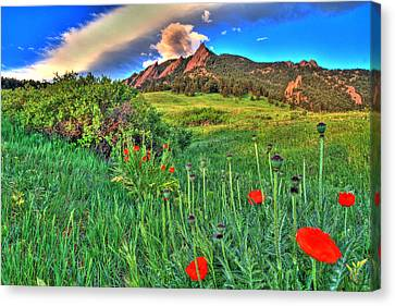 Flatirons And Poppies Canvas Print by Scott Mahon