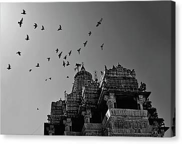 Flight Of Birds Above Jadgish Temple Canvas Print by Prashanth Naik