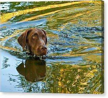 Floating Head Canvas Print by Jean Noren