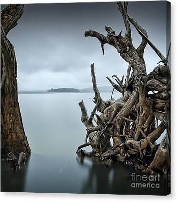 Floating Island Canvas Print by Michael Howard