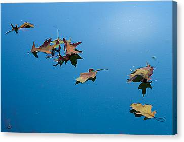 Floating On The Sky Canvas Print by Michael Flood