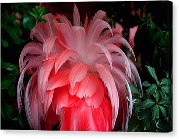 Canvas Print featuring the photograph Flora And Fauna Number Two by Lon Casler Bixby