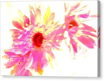 Floral Burst Canvas Print by Mickey Hatt