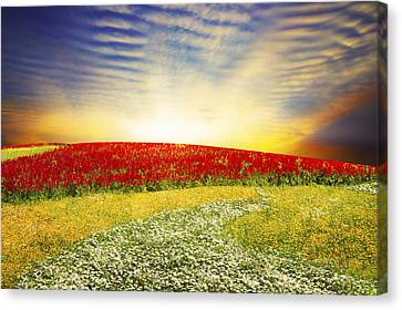 Garden Scene Canvas Print - Floral Field On Sunset by Setsiri Silapasuwanchai