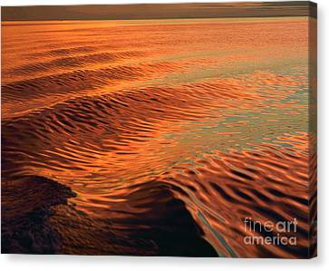 Canvas Print featuring the photograph Florida Bay by Doug Herr