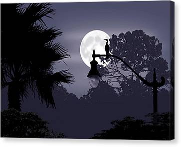Florida Moonlight Canvas Print by Ginny Schmidt
