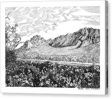 Florida Mountains And Poppies Canvas Print by Jack Pumphrey