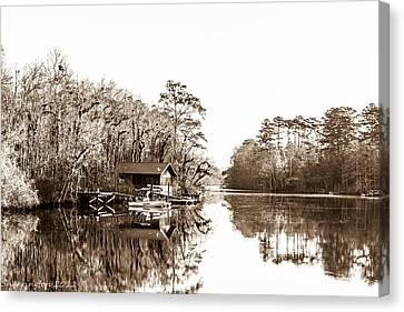 Canvas Print featuring the photograph Florida by Shannon Harrington