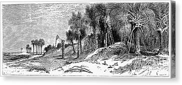Florida: St. Johns River Canvas Print by Granger