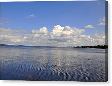 Floridian View Canvas Print by Sarah McKoy