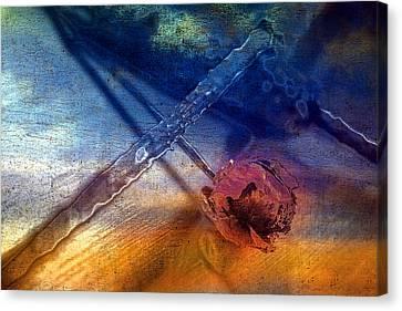 Flower 2 Canvas Print by Mauro Celotti