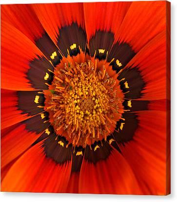 Flower Eye Canvas Print