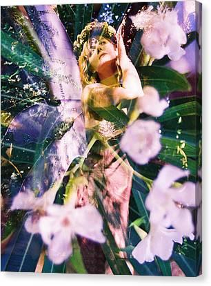 Flower Faerie Dreams Canvas Print by Cyoakha Grace