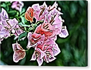 Pistol Canvas Print - Flower Painting 0005 by Metro DC Photography