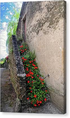 Canvas Print featuring the photograph Flower Stairway by Dave Mills
