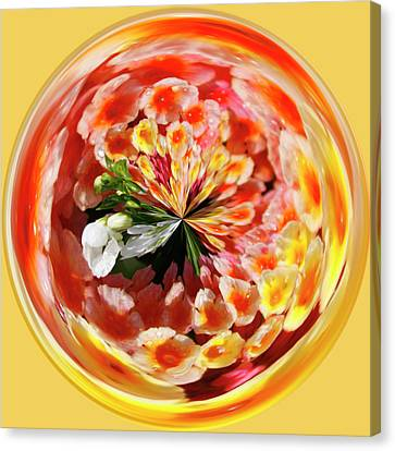 Flowering Orb Canvas Print