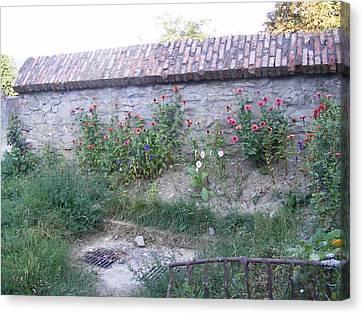 Canvas Print featuring the photograph Flowers by Bogdan Floridana Oana