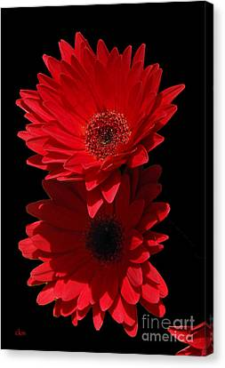 Canvas Print featuring the photograph Flowers From My Son by Cindy Manero