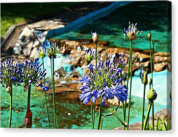 Flowers Canvas Print by Jenny Senra Pampin