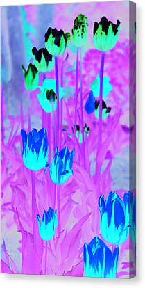 Canvas Print featuring the photograph Flowers by Josef Pittner