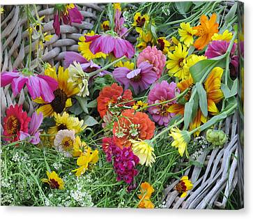 Canvas Print featuring the photograph Flowers by Tina M Wenger