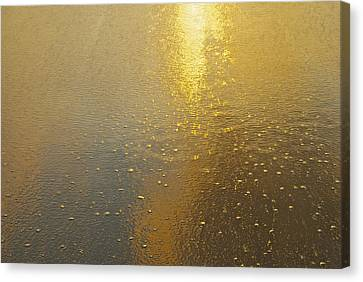 Flowing Gold 7646 Canvas Print by Michael Peychich