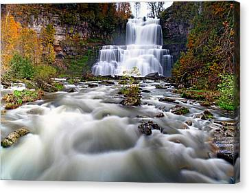 The Universe Canvas Print - Flowing by Mitch Cat