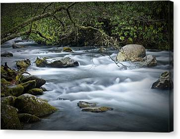 Overhang Canvas Print - Flowing Stream In The Smokey Mountains No.312 by Randall Nyhof