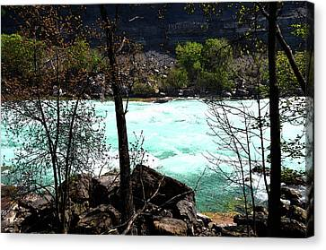 Canvas Print featuring the photograph Flowing Streams by Pravine Chester