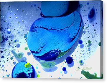 Fluidism Aspect 166 Photography Canvas Print by Robert Kernodle