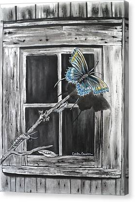 Fly Away Free Canvas Print by Carla Carson