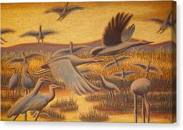 Fly Away Canvas Print by Thomas Maynard