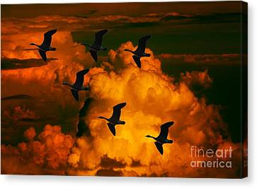 Flying High In The Sky Canvas Print