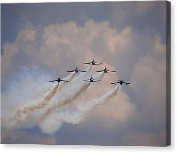 Flying In Formation Canvas Print by Julia Wilcox