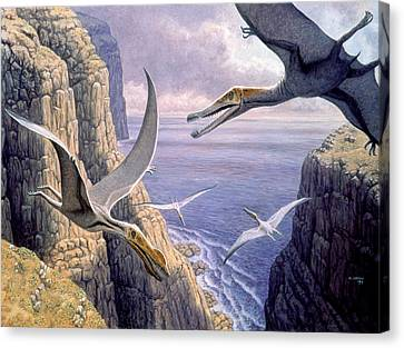 Toothless Canvas Print - Flying Pterosaurs by Mauricio Anton