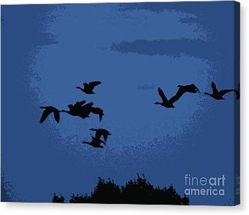 Flying South Canvas Print by Trevor Fellows