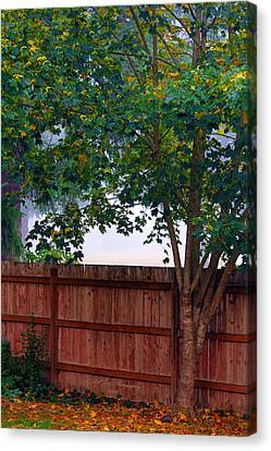 Fog In Olympia Canvas Print by Jeanette C Landstrom