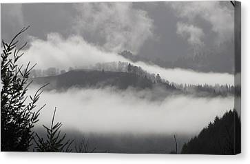 Canvas Print featuring the photograph FOG by Katie Wing Vigil