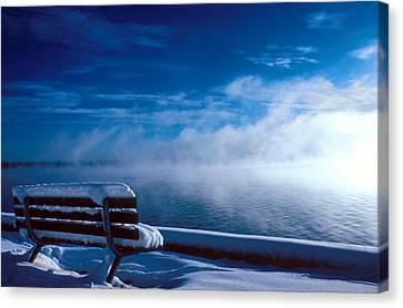 Fog Of Winter Canvas Print