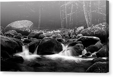 Fog On The Roaring Fork Canvas Print