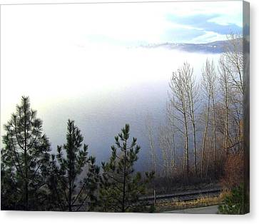 Fog On Wood Lake Canvas Print by Will Borden