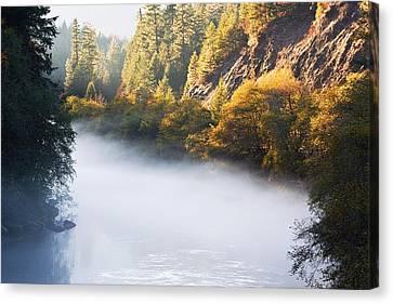 Fog Solitude Canvas Print