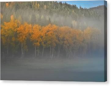 Foggy Autumn Morning Canvas Print by Albert Seger