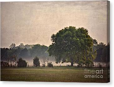 Canvas Print featuring the photograph Foggy Country Morning by Cheryl Davis