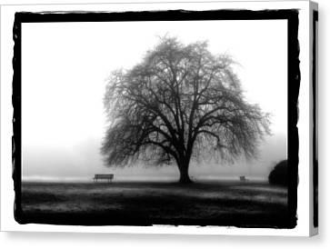 Foggy Day H-4 Canvas Print by Mauro Celotti